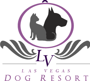 Las Vegas Dog Hotel - Dog Day Care Center