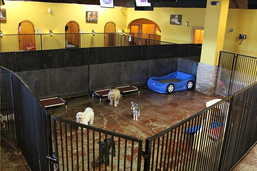 Indoor Play Area Gallery