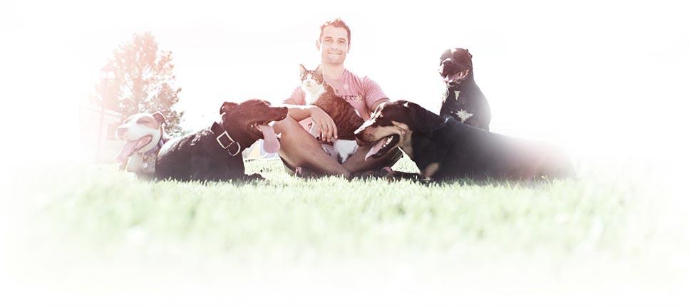 Dog-Training-LV-Dog-Resort
